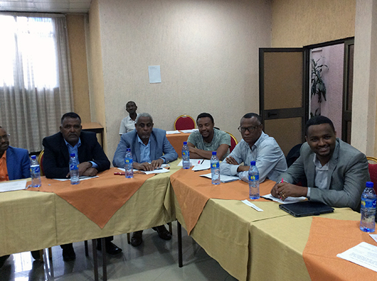 ammatillisten oppilaitosten johtajia TECIP-hankkeen koulutuksessa Etiopiassa