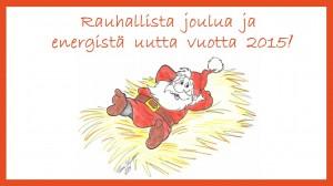Rauhallista  joulua  ja