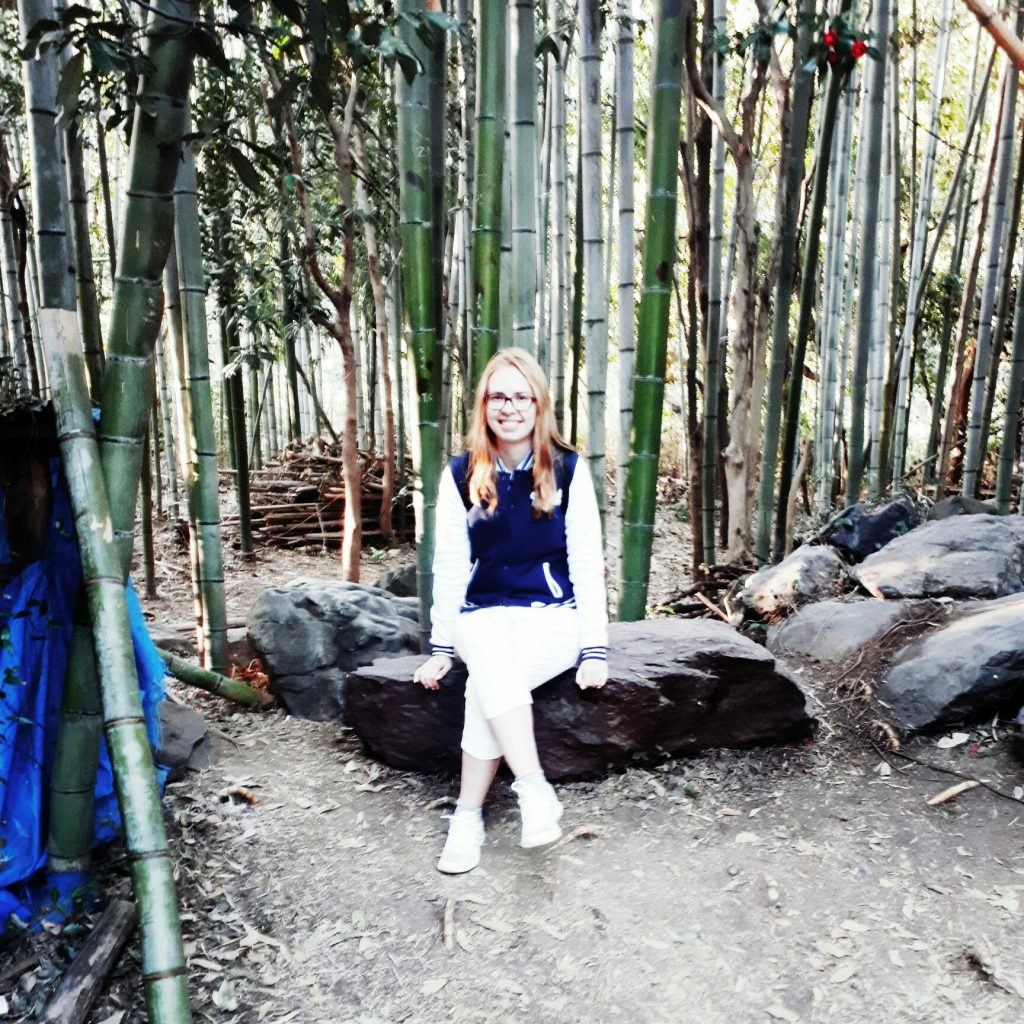 I am in the bamboo forest