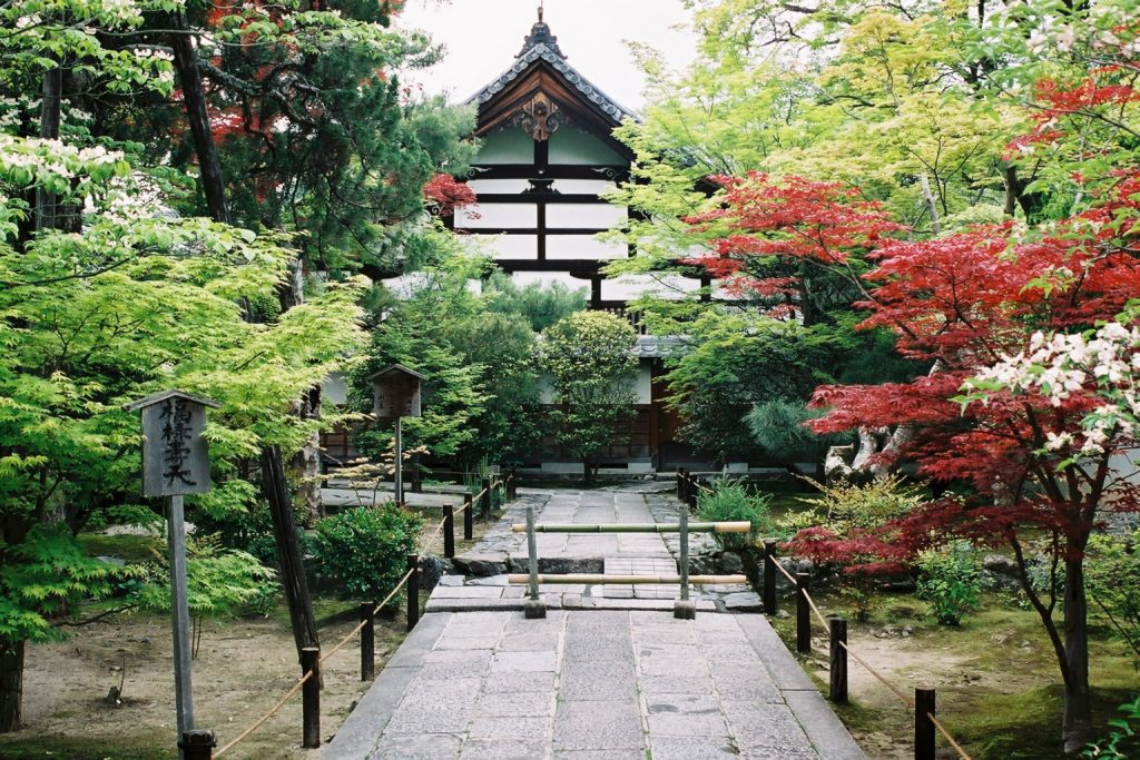 There is lots of temples in Kyoto