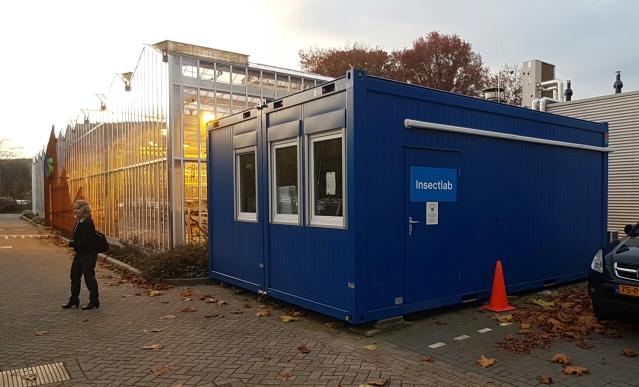 Hyönteisten kasvatuksen koetutkimuskontti Hertogenboschissa (HAS University of Applied Sciences).