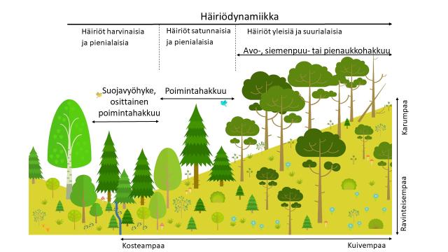 Metsän Jatkuva Kasvatus